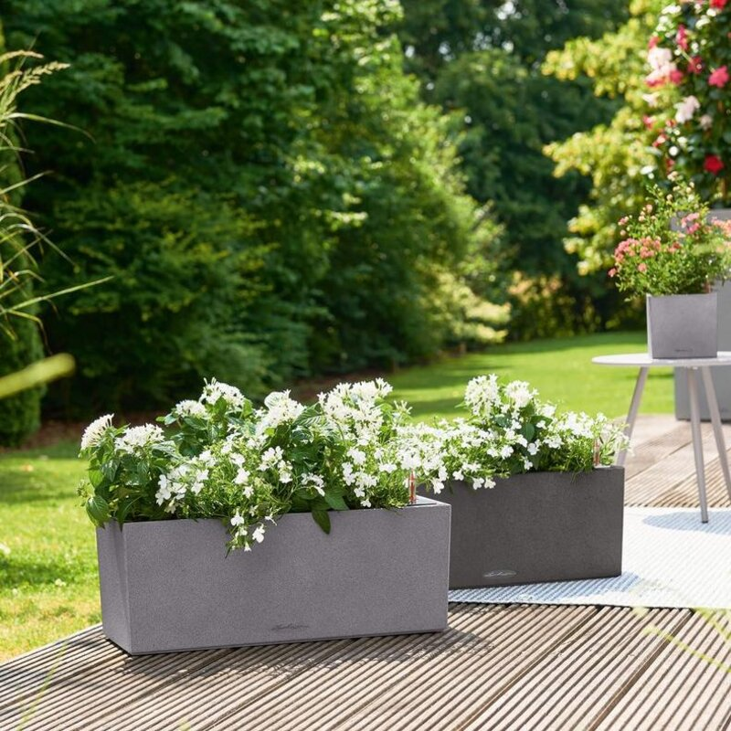 Tips And Ideas For Using Trough Planters