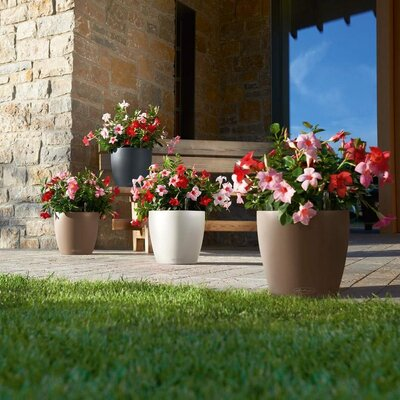 Outdoor Planters Buying Guide