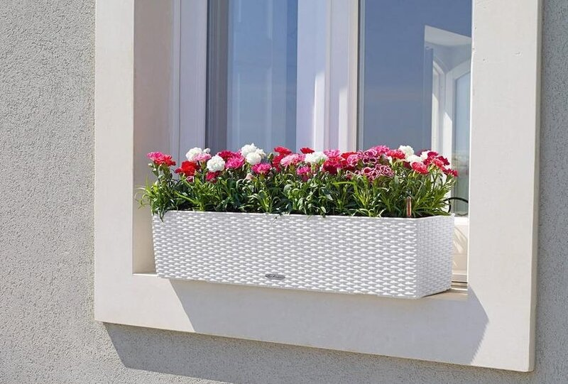 flower boxes outside the window