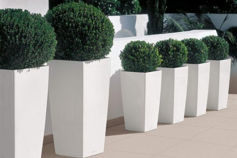 design of pots in the garden