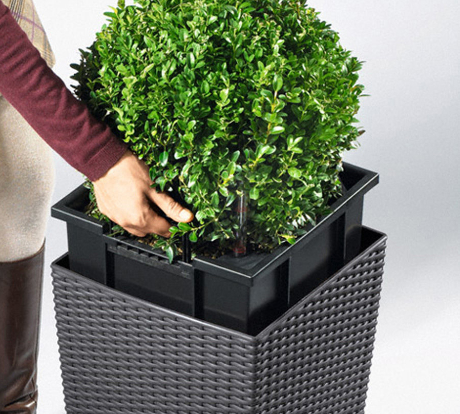 Self Watering Planters Part - 19: LECHUZA Self-watering Planters Are Chosen By People Who Want To Decorate  Their Interiors Or Are Engaged In Floriculture. LECHUZA Planters Are The  Choice Of ...